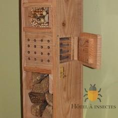 Hôtel à abeilles sauvages | Hôtel à insectes