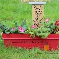 Hôtel de jardinière   Hôtel à insectes