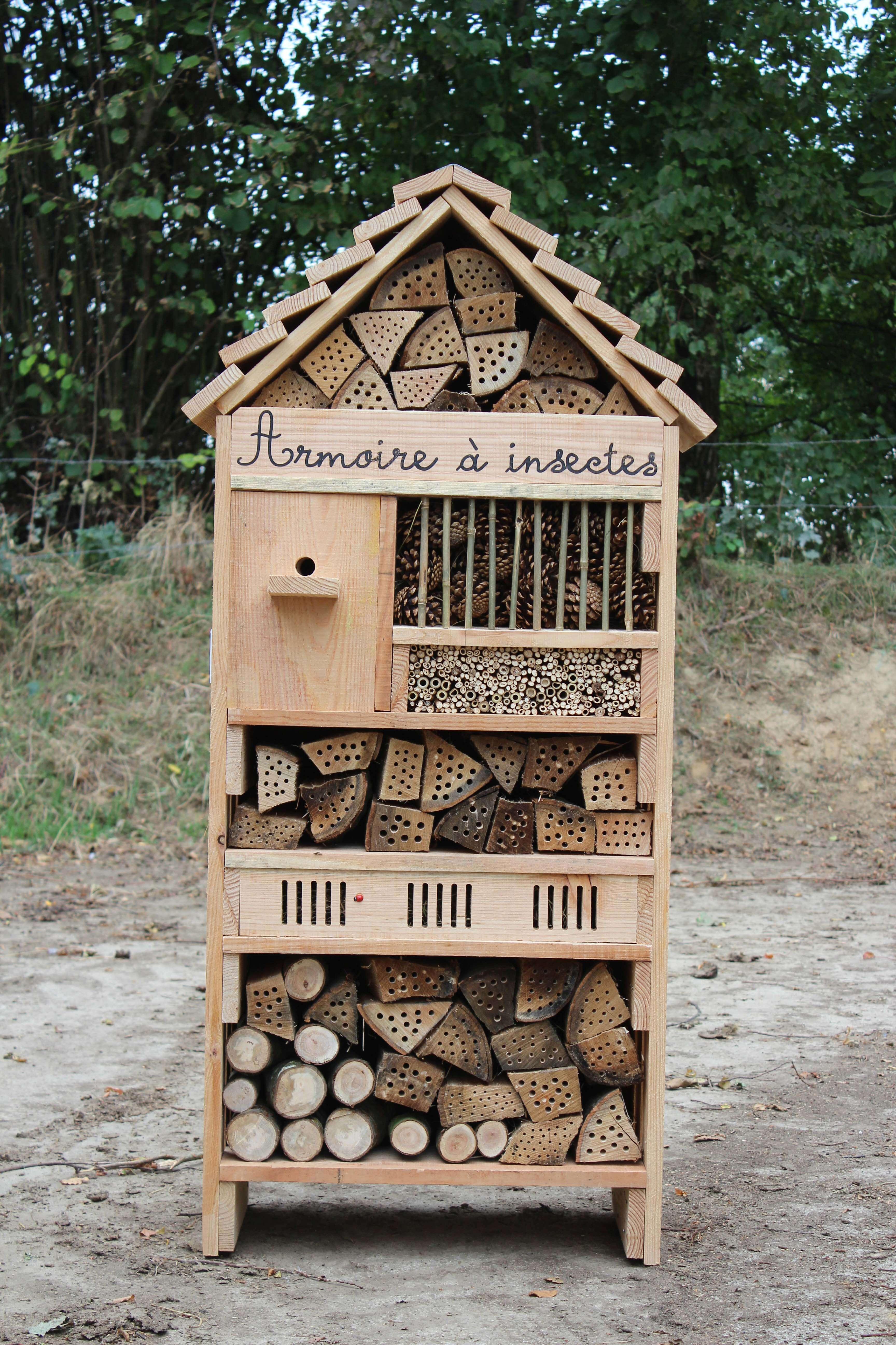 Armoire à insectes © option bourdons